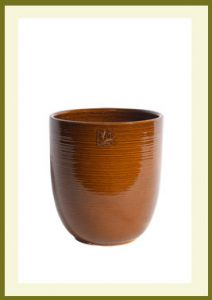 Tall Container - Golden Umber $44.99