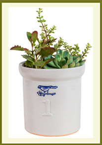 Farmhouse Crock 1 Gallon  $39.99